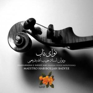 shahnavazan 2